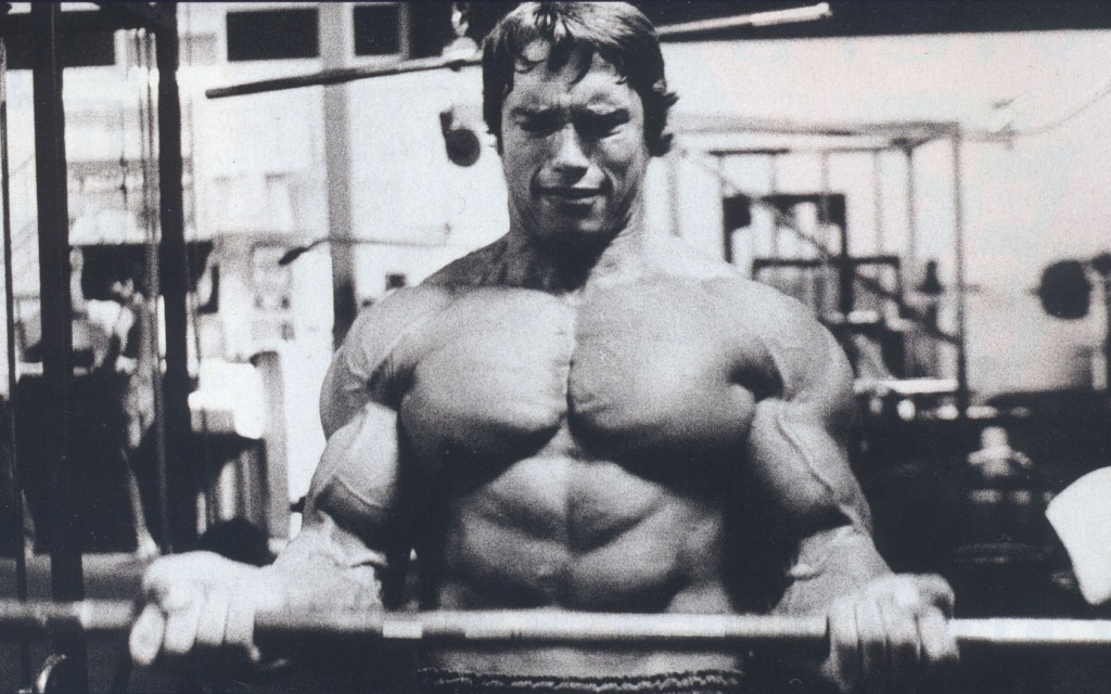 tumblr_static_arnold-schwarzenegger-wallpaper-actor-young-kachek-bodybuilding-3
