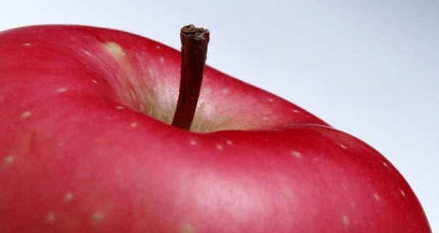 A frutose engorda?